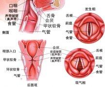 声带小结对人体有哪些严重的危害